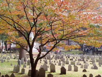 Granary Burying Ground Fall
